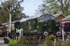 Preservation BR Green